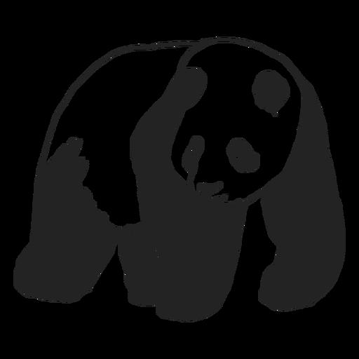 Oso panda, animal, ambulante