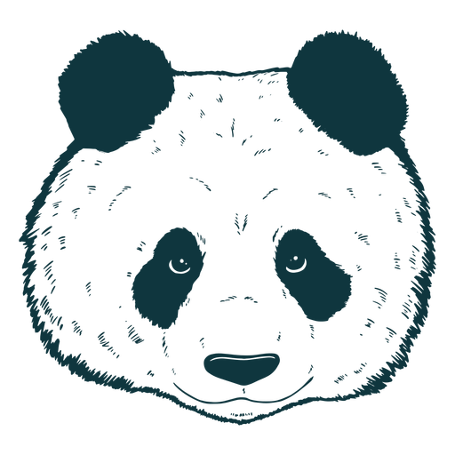 Panda head hand-drawn cute