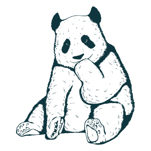 Panda bear cute hand-drawn