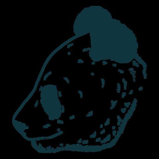 Cabeza de oso panda dibujada a mano