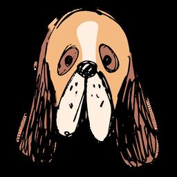 Basset hound dog hand drawn