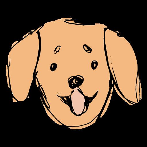 Hand drawn cute golden retriever face
