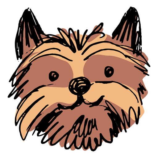 Yorkshire terrier dog head hand drawn Transparent PNG