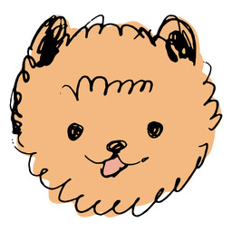 Pomeranian dog hand drawn face