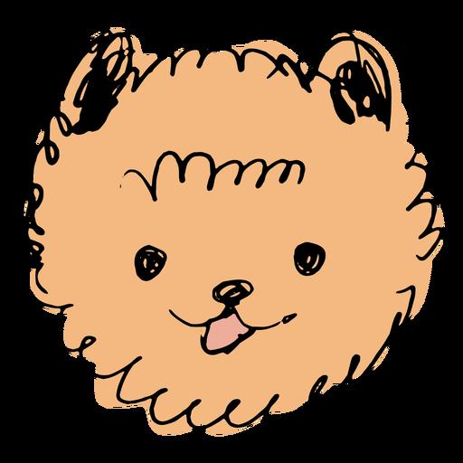 Pomeranian dog hand drawn face