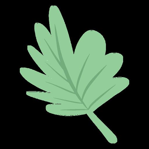 Simple hand drawn semi flat palm leaf