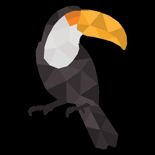 Standing simple polygonal toucan