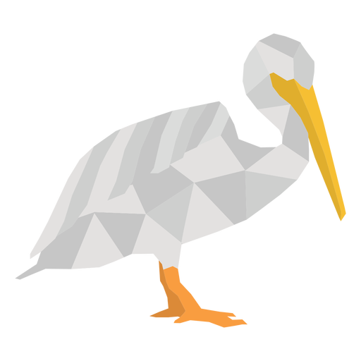 Seagull bird polygonal