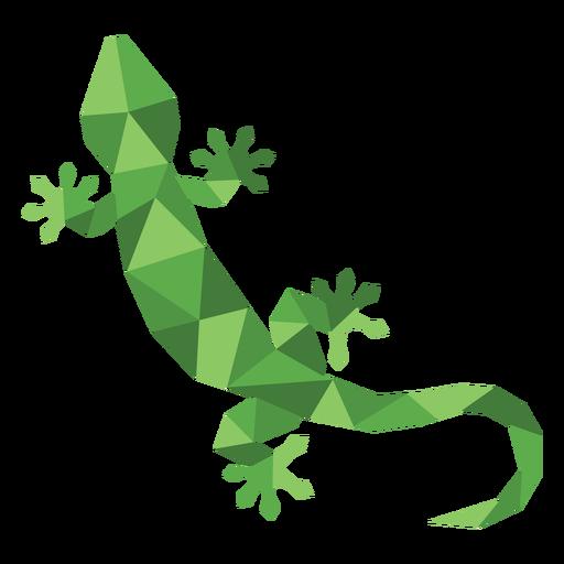 Color simple polygonal lizard