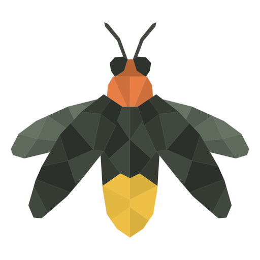 Fly insect polygonal