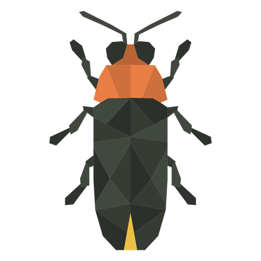 Color polygonal beetle bug