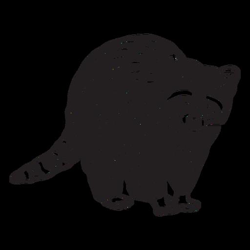 Hand drawn standing raccoon