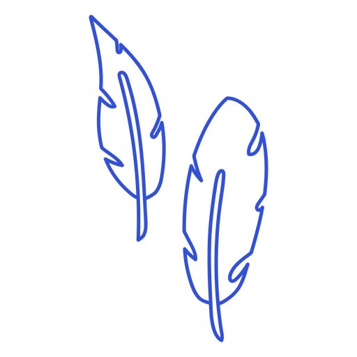 Pair of simple stroke feathers