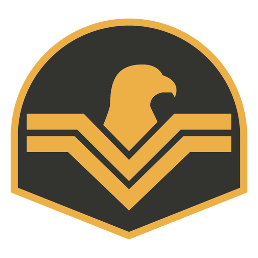 Army eagle patch badge