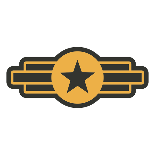 Army star patch badge