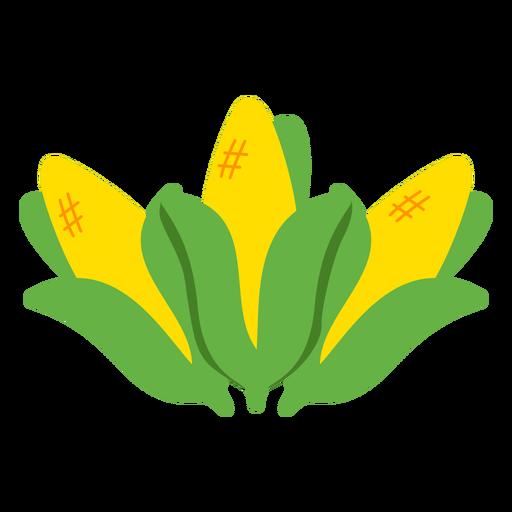 Corn mahindi food flat