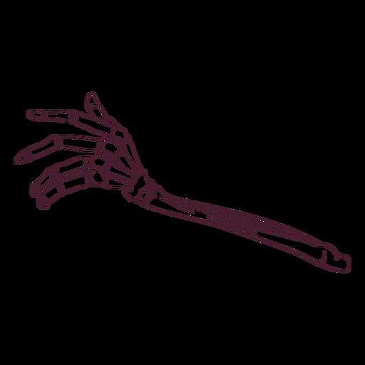 Hand bones hand-drawn