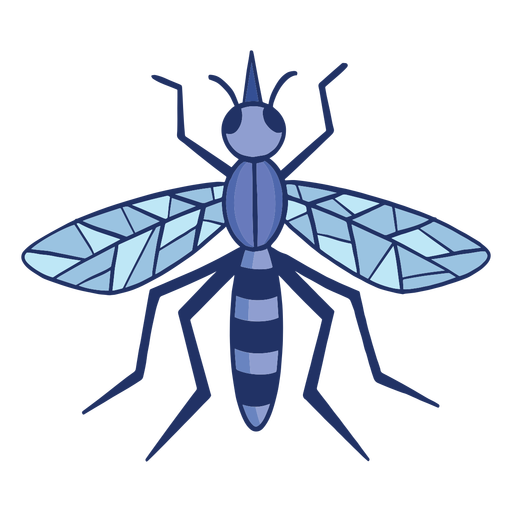 Trazo de color de mosquito