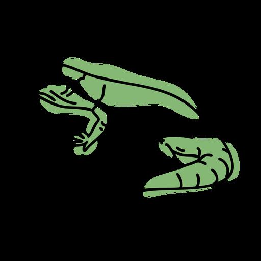 Color stroke semi colored gecko