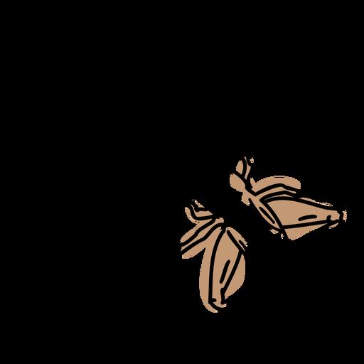 Color stroke semi colored cricket top
