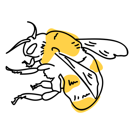 Bee color stroke Transparent PNG
