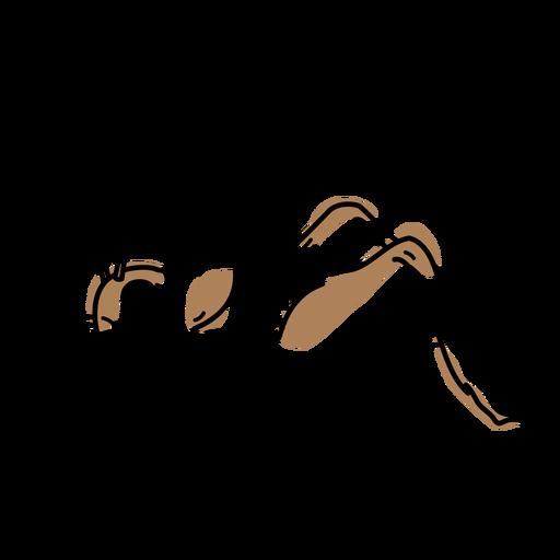 Color stroke semi colored cricket