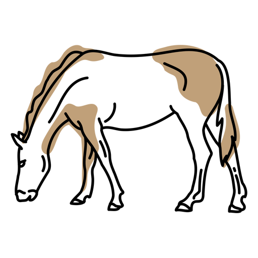 Horse color stroke