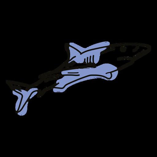 Color stroke shark semi colored