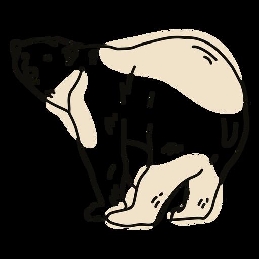 Wild polar bear color stroke