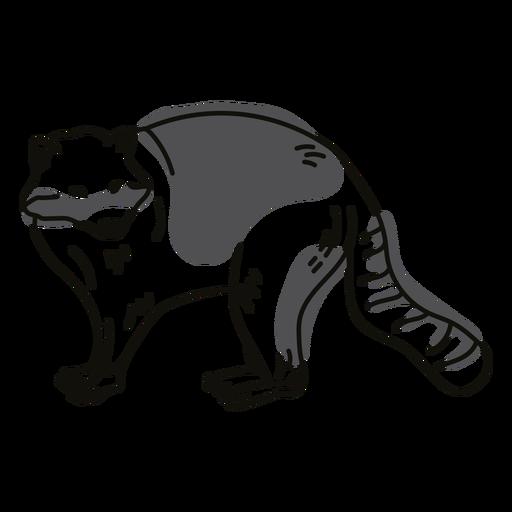 Raccoon animal stroke