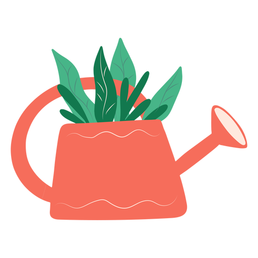 Flat plant in watering can