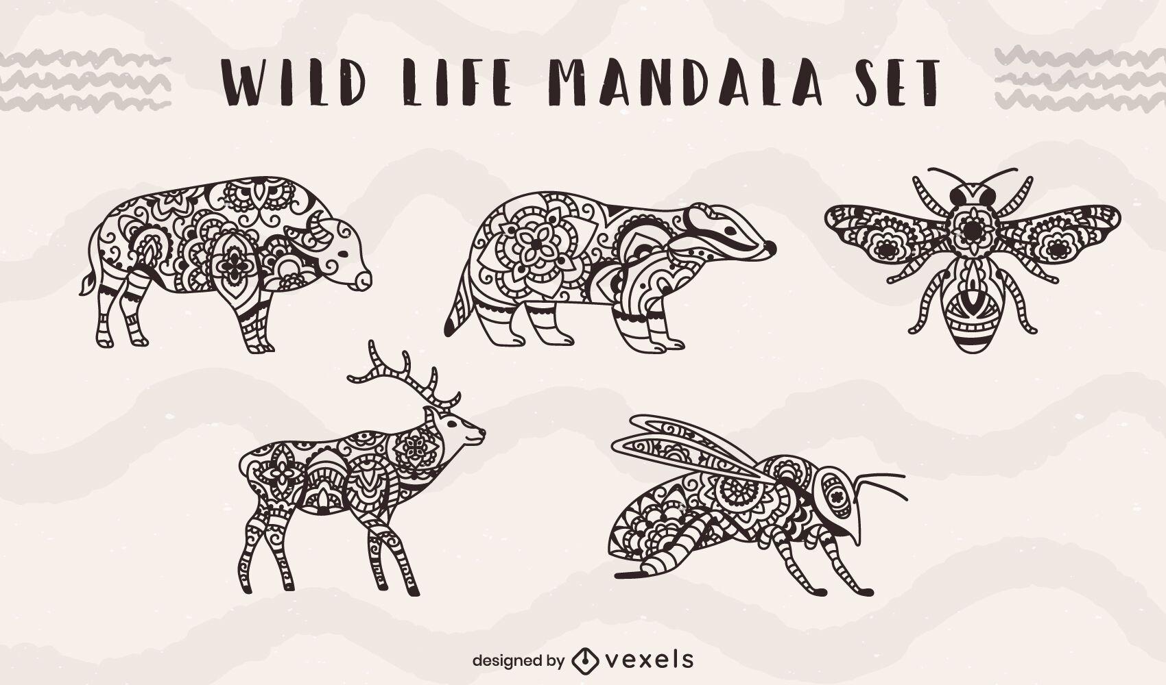 Conjunto de mandala de insetos e animais selvagens