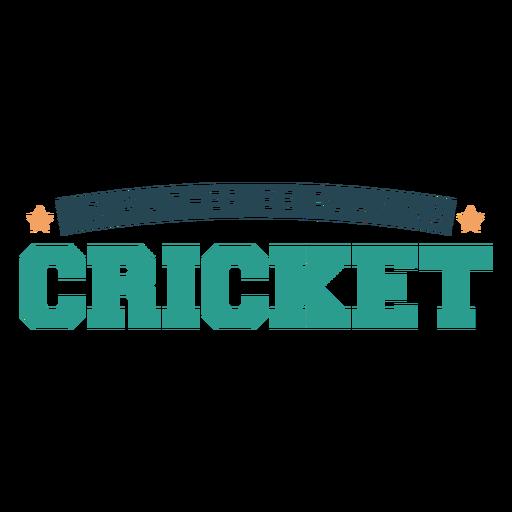 17_Camisetas_de_cricket_VinylColor - 10