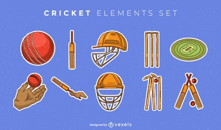 Conjunto de elementos de equipamento de críquete