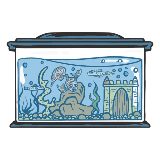 Fishes in fishtank