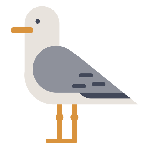 Standing seagull flat