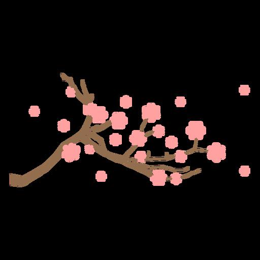 Sakura branch flat