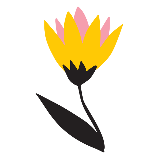 Yellow and pink tulip flat