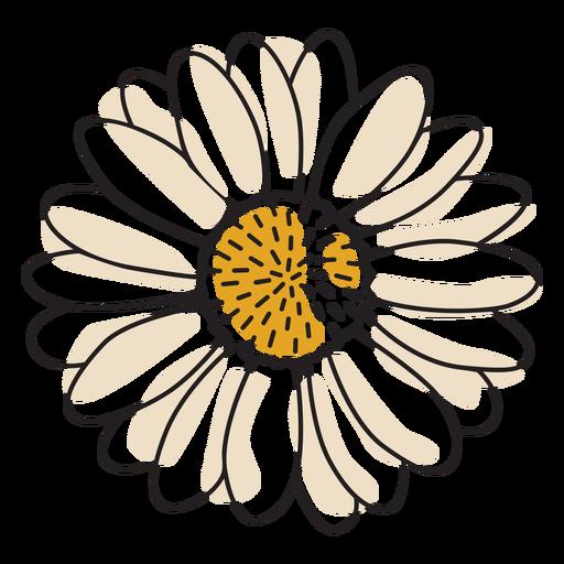 Sunflower color stroke