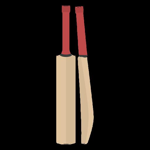 Cricket sport bat equipment