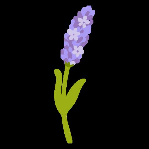 Cute lavender flower flat