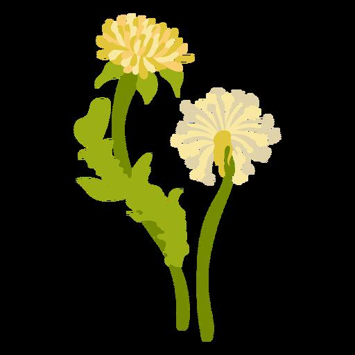 color botánico de la naturaleza - 1