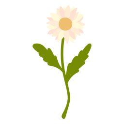 color botánico de la naturaleza - 2