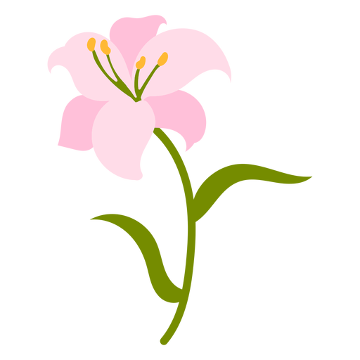 Pink Lily flower flat