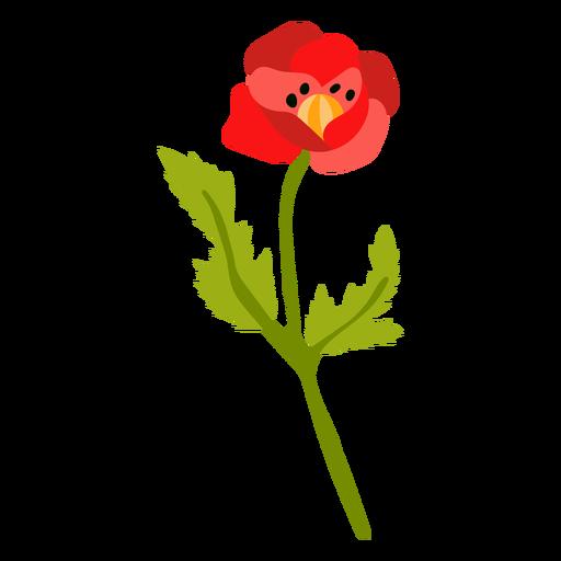 Poppy flower semi flat