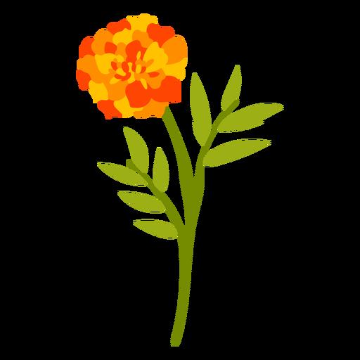Orange Carnation Flower flat