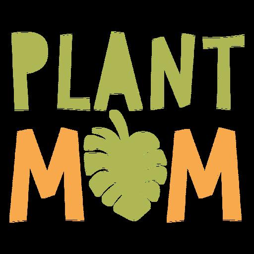 Plant mom flat