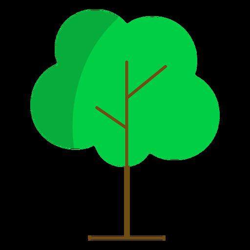 Árbol alto semi plano