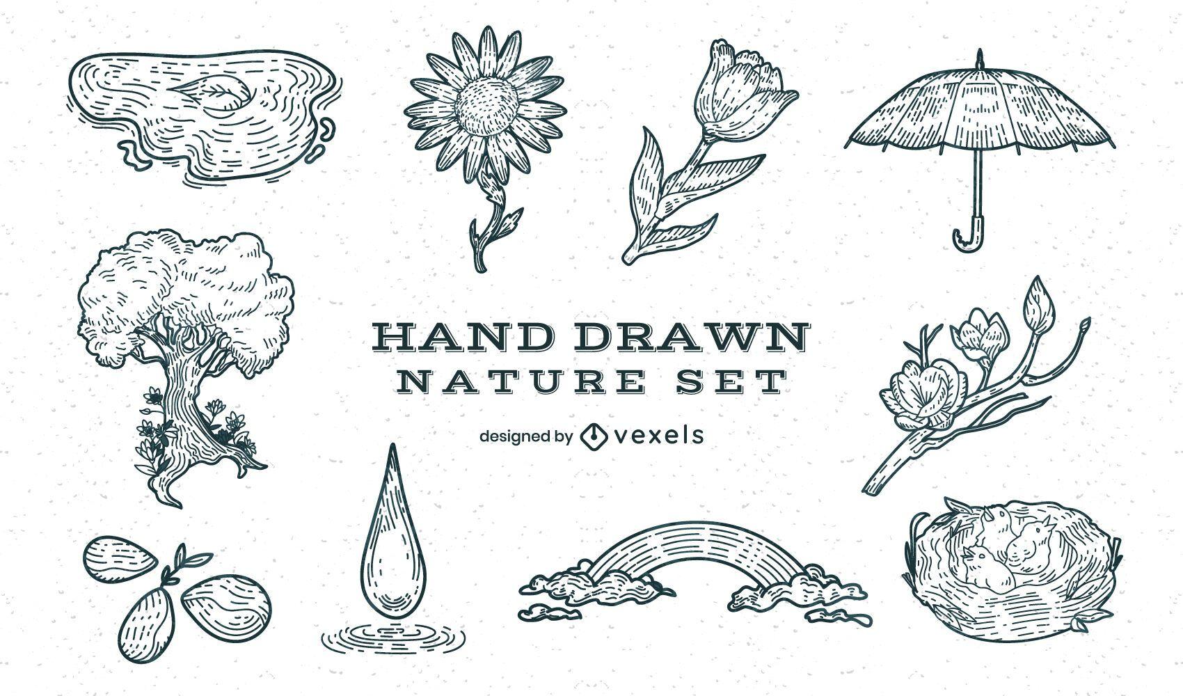 Conjunto de elementos dibujados a mano de bosque natural