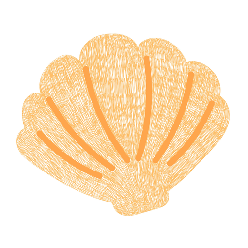 Seashell ocean hand drawn